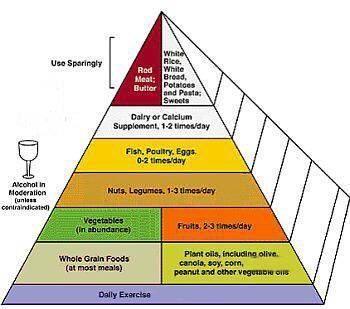 Akne Ernährungsplan Pdf